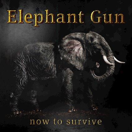 "ELEPHANT GUN ""Now To Survive"""