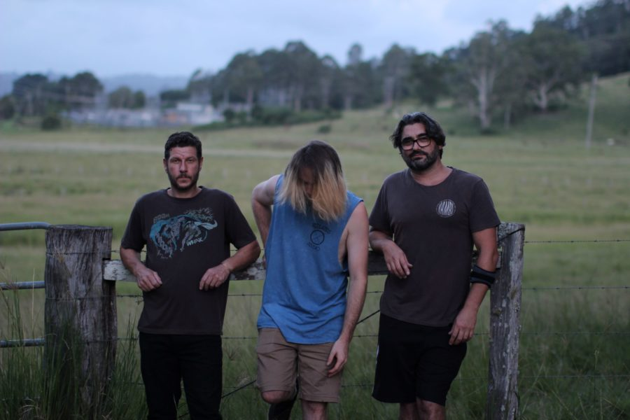 FLY AGARIC Drop New Tune
